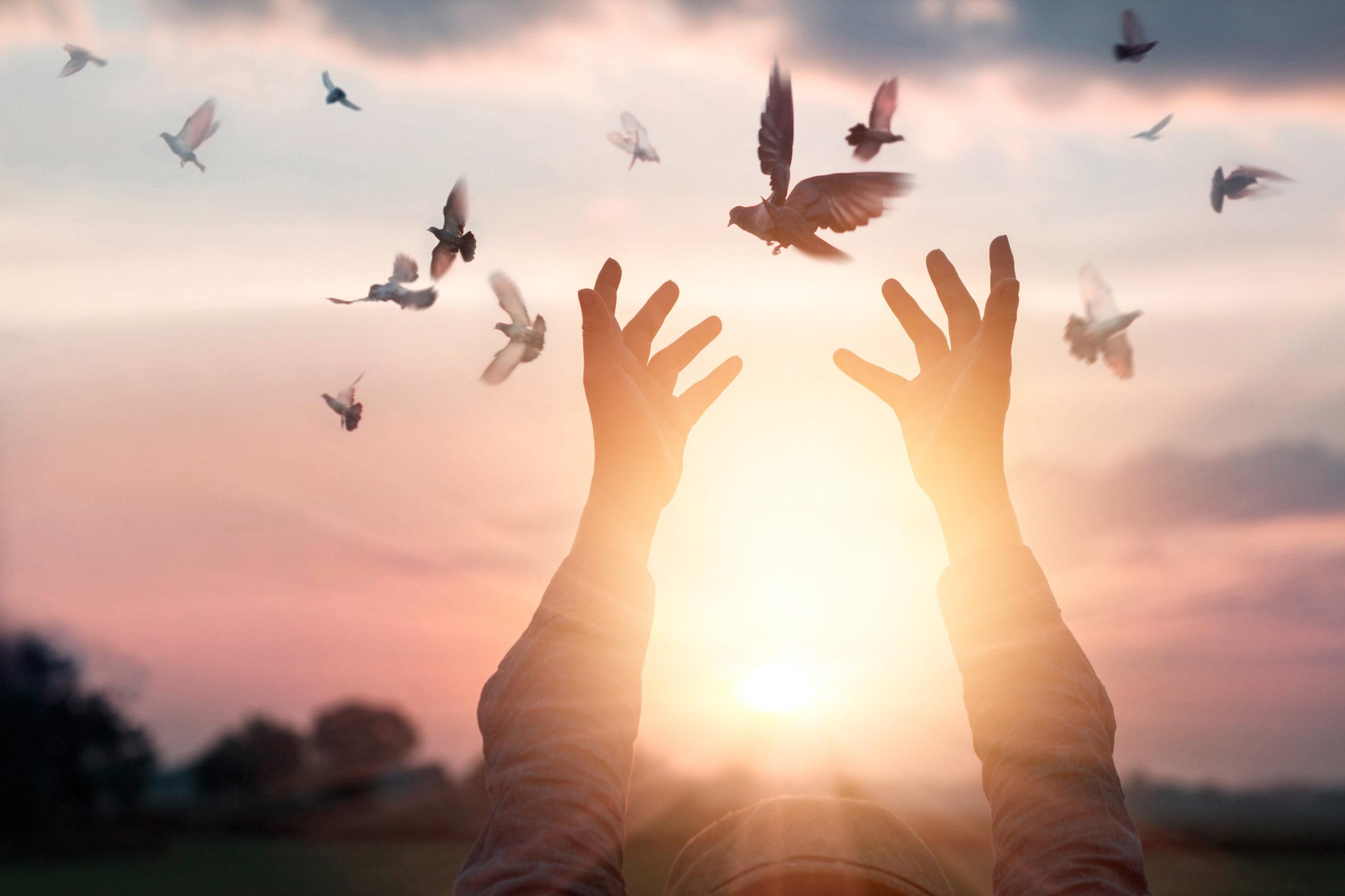 Apprendre à gérer son stress c'est révolutionner sa vie, la prendre en main, changer et progresser vers une meilleure version de soi-même